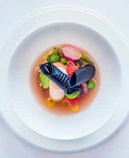Dish of two squid ink rigatoni with radishes and peas in a minestrone broth