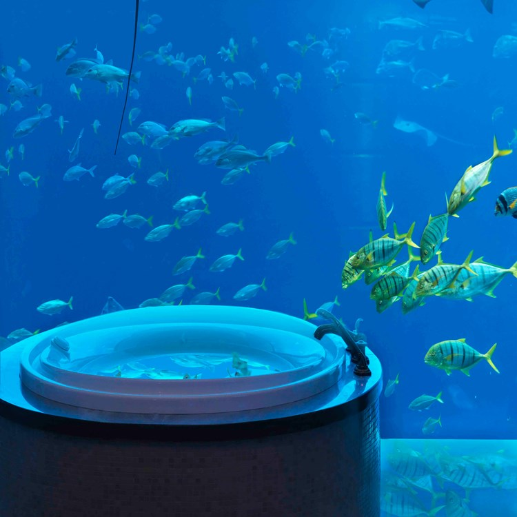 An underwater suite looks out on to the open-air aquarium at Atlantis, The Palm, Dubai