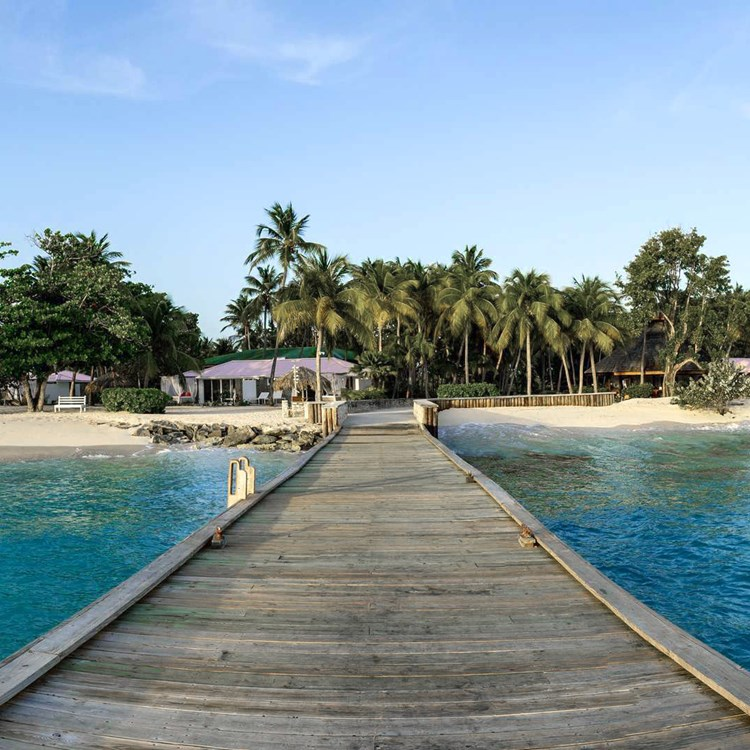 view from a wooden pier looking back at a tropical island